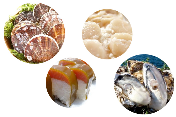 雄勝そだての住人 新鮮な海産物がインターネットで購入可能!
