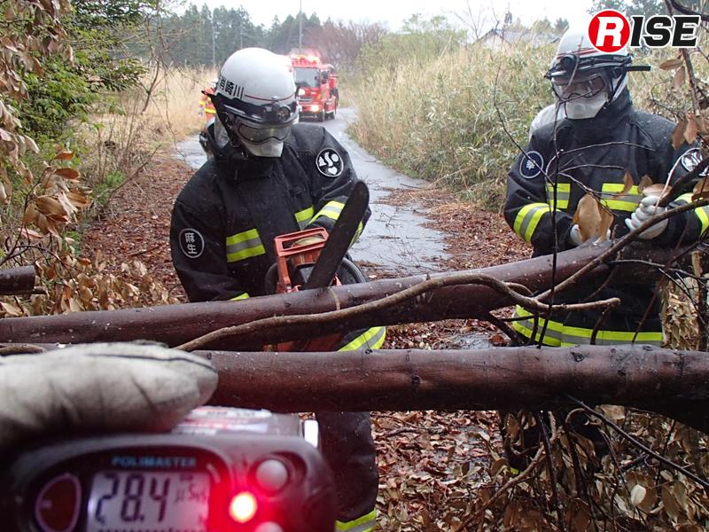 道路を塞ぐ倒木を除去する。活動中も常に空間線量に注視する。