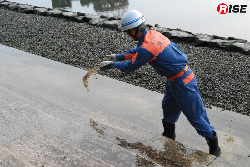 コケや汚れを落とすため、研磨剤として砂を使用する。