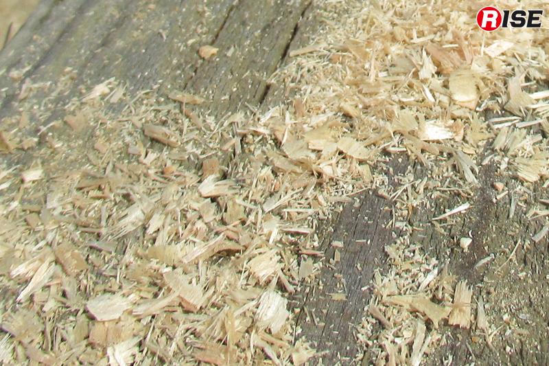 切れにくくなった状態では削りカスは粉のようになる。