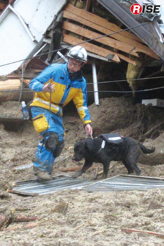 生存者の検索を実施する警視庁の警備犬。