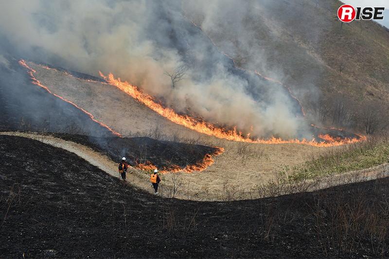 広大な草原を炎が走るさまは圧巻といえる。