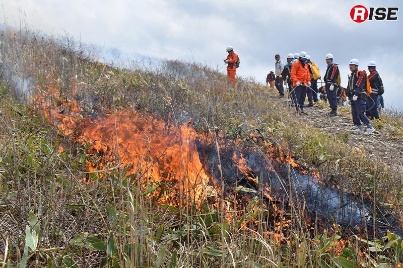 炎がゆっくりと草原を走る。