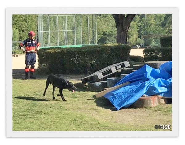 熊本県消防有志の会 KFA 様 事例画像3