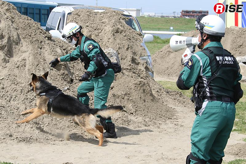 【土砂崩落現場からの救出救助訓練】人命検索には警備犬が投入される。